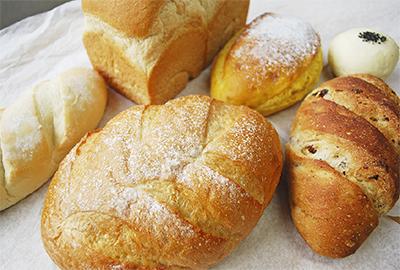 太古の恵み 宿るパン