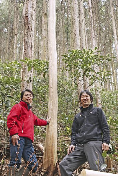 林業の新しい形に挑戦