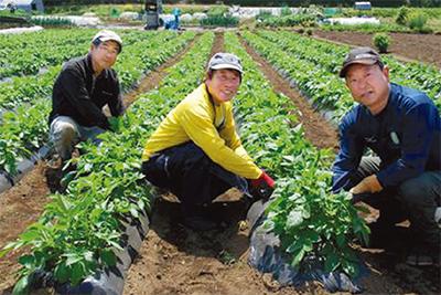 早期退職3人 新規就農に挑戦中