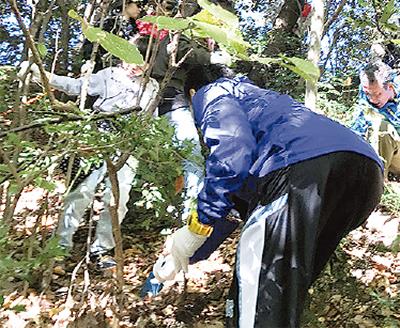 「ヒノキ植林」し、環境保護