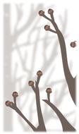 春を待つ「冬芽」学ぶ