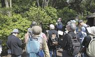 「縄文の村」で植物観察会