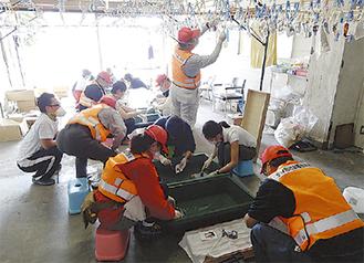 2011年に石巻市で取得物の整理を行うようす