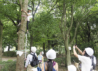 木登りを体験