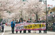 満開の桜 過去最大級の人出