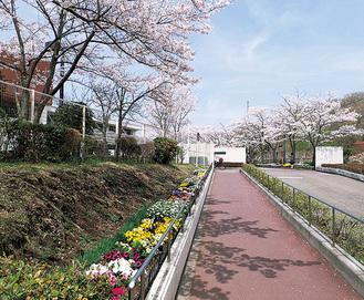 桜の丘学園の外観