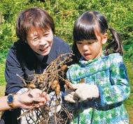 落花生の収穫など賑わい