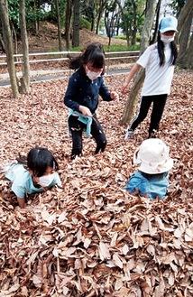 落ち葉のプールで遊ぶ子どもたち