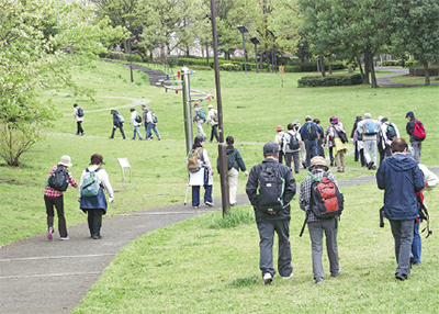 小山田緑地を散策