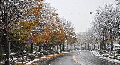 市内でも積雪を観測