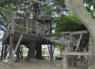 樹木を覆うように建てられているツリーガーデン