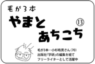やまとあちこち【13】
