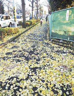 イチョウの葉で覆われた歩道