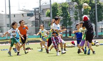 タグラグビーに熱中する児童たち