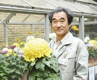 手がけた菊を手にする鈴木さん