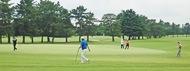 第50回大和市ゴルフ選手権