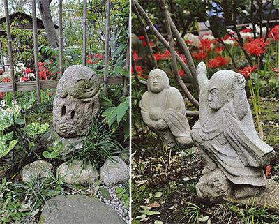 石像の合間を縫い、咲く