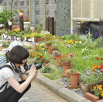 ガーデンパートナーを募集