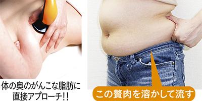 メスの要らない脂肪分解