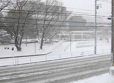 大雪、市内に影響