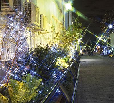 手づくりイルミ、街照らす