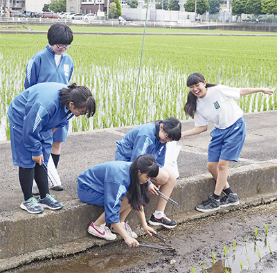 渋谷中が校外清掃活動