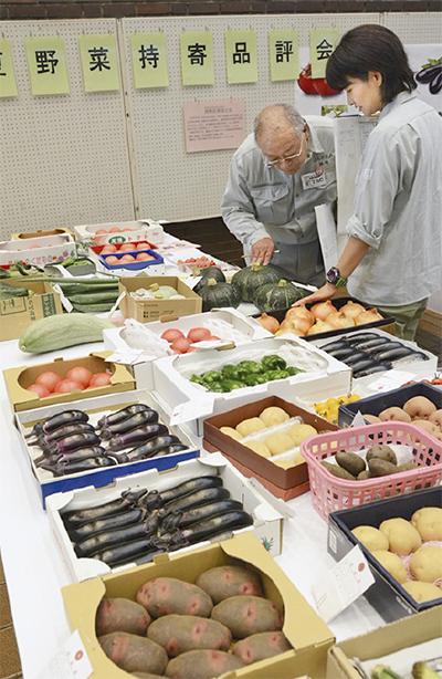地元夏野菜を品評