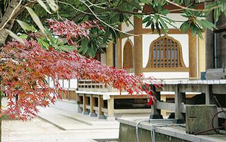 訪問先のひとつ龍峰寺