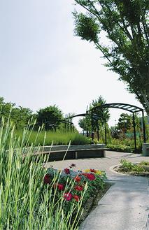 60種類の植物が植えられているイングリッシュ風庭園