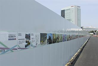 工事現場の仮囲いに写真が展示されている