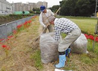 刈った草を袋に詰める会員