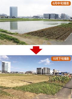 市道として整備が予定されている農道は依然手付かずのまま(写真奥・右側が「ららぽーと」)