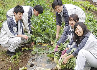 笑顔で収穫する高校生