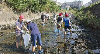 川に入り清掃する児童