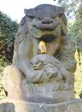 県央の「狛犬」写真展