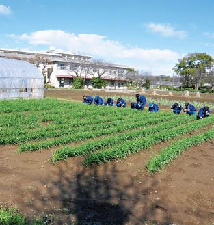 認証を受けた中央農業高校の土地