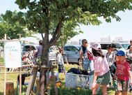 緑化フェス開催