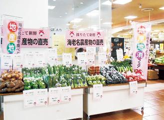 新鮮な地場野菜が並ぶ