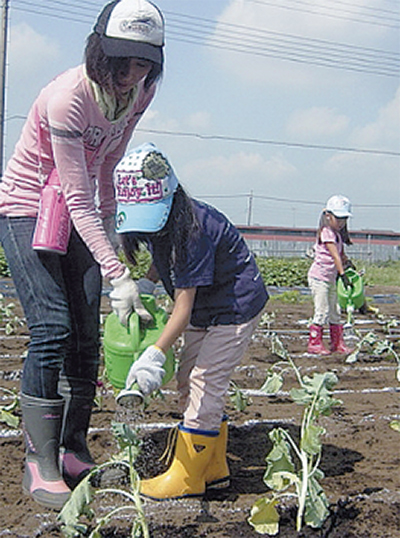 種蒔きから収穫まで農体験