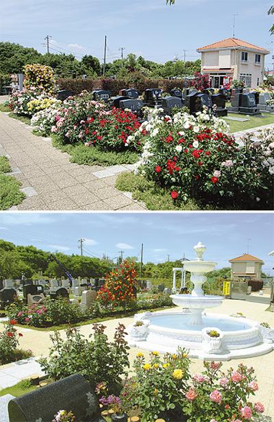 バラに包まれた華やかな公園墓地