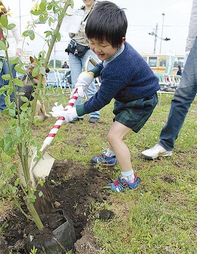 キングサリを植樹