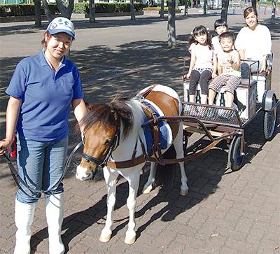 ポニーの馬車 運行開始
