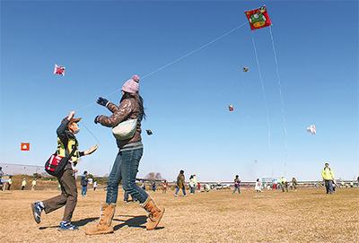 快晴の空に相模凧泳ぐ