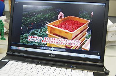 「苺」テーマに映像配信