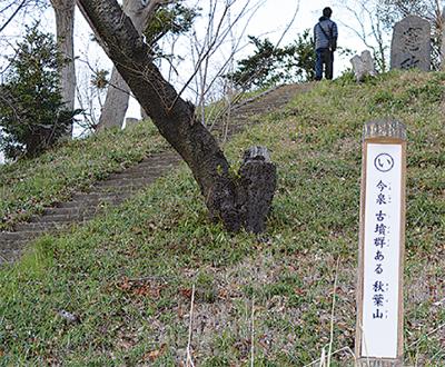 桜と史跡を巡り歩く