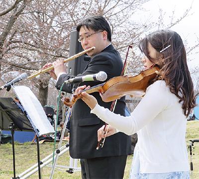 三川公園で桜ライブ