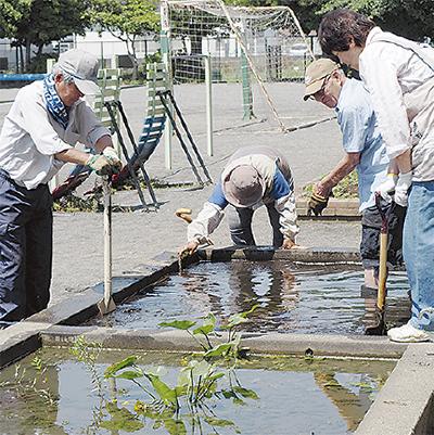 「河骨(コウホネ)保存の会」が清掃活動