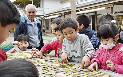 園児が干し芋作りに挑戦