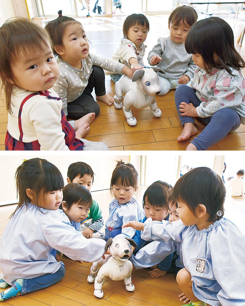 aiboとの交流を楽しむ園児たち