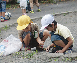 砂場を綺麗にする児童